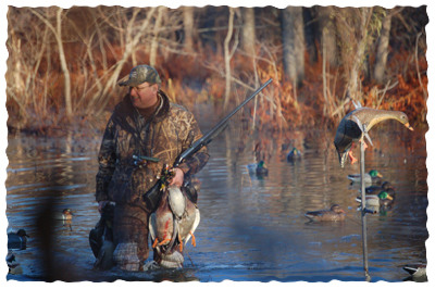 arkansas green timber duck hunting guides