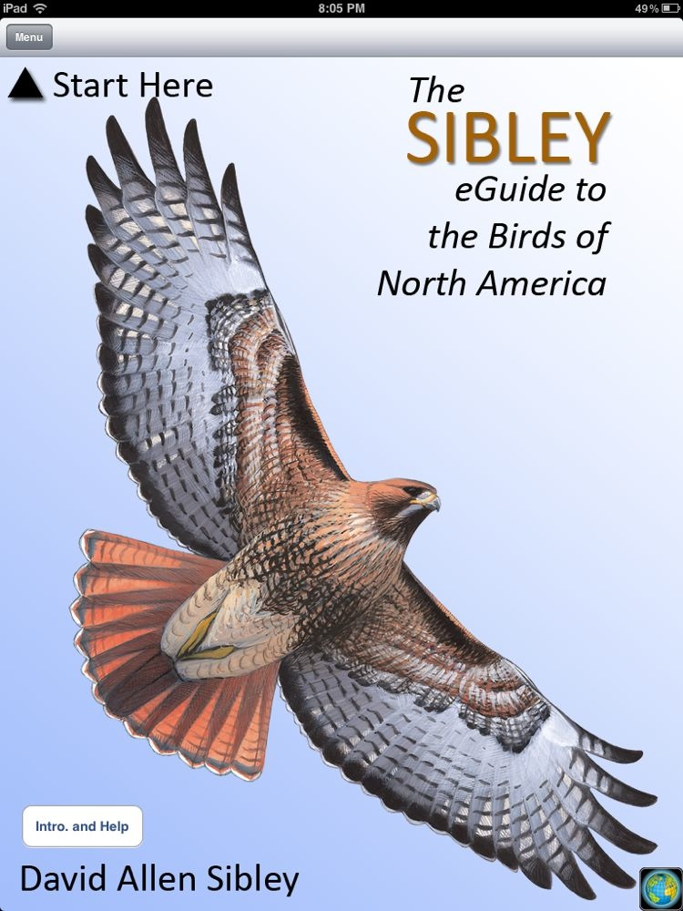sibley field guide to birds of north america