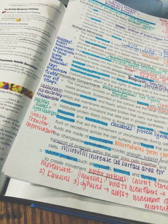 study guides for college students