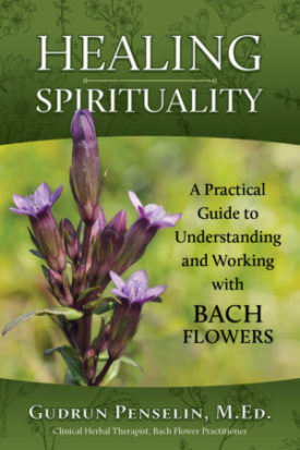 a guide to understanding herbal medicines