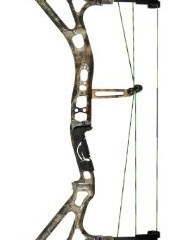 arrow guide for compound bow