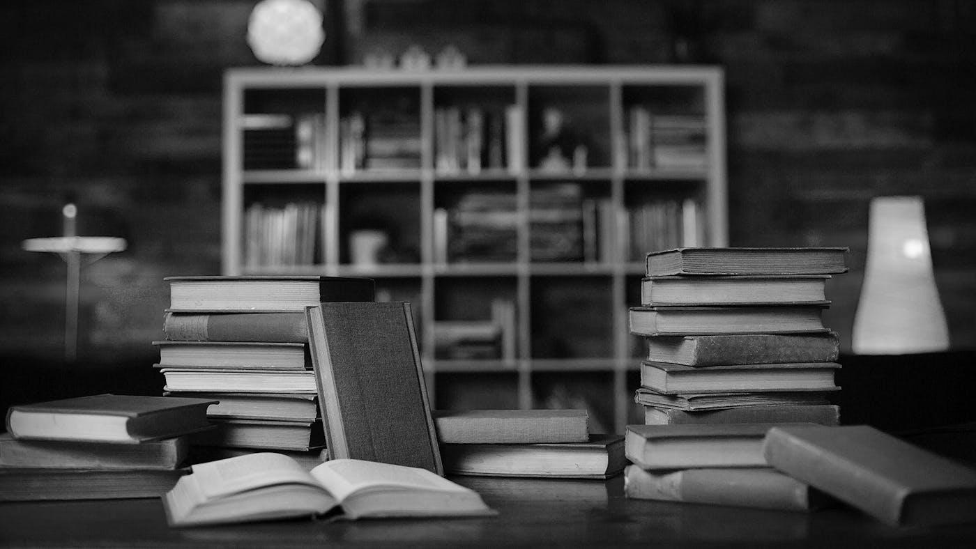 romans study guide john piper